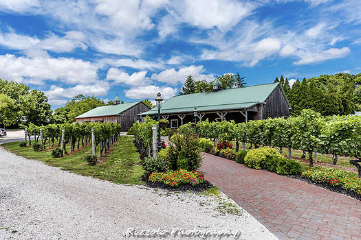 Summer winery  by Alan Rizzolo