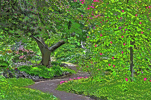 Summerland Garden by Judy Grant