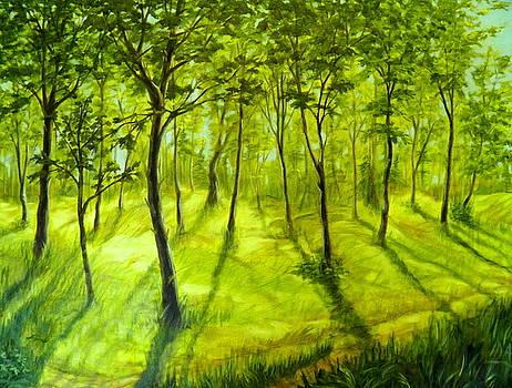 Summers Approach by Ida Eriksen
