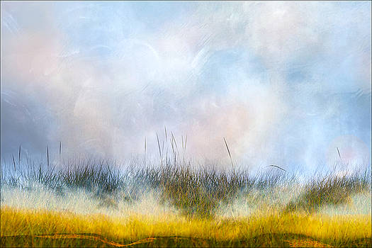 Summer's Daydream by Michael Bufis
