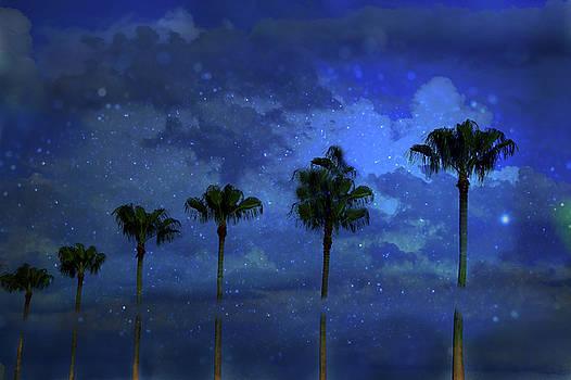 Summer's Dream by Eagle Finegan