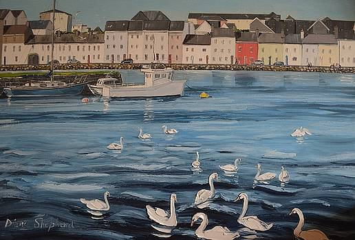 Summers evening at Claddagh Quay Galway Ireland by Diana Shephard
