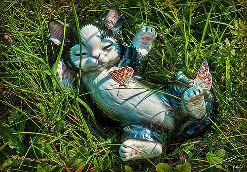 Summertime in my Garden by Hanny Heim