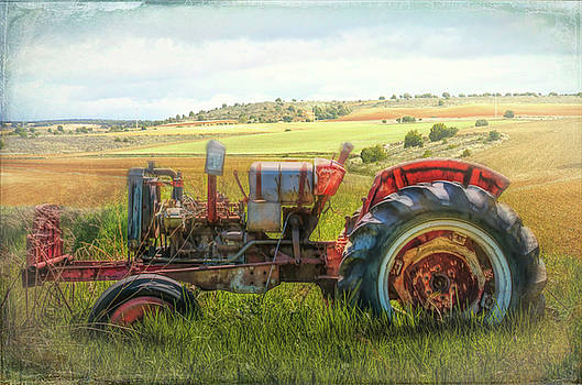 Debra and Dave Vanderlaan - Summertime Old Red at the Farm