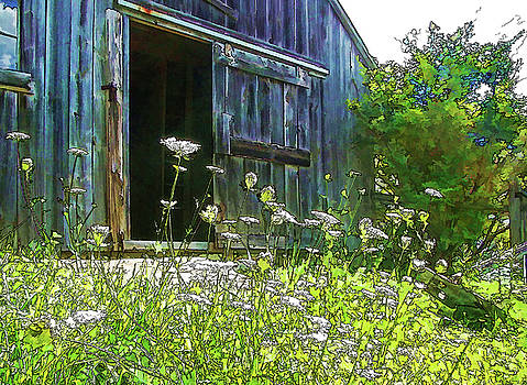 Summertime Peace by Betsy Zimmerli