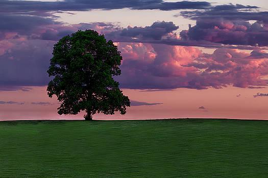Summertime sunset by Dana Plourde