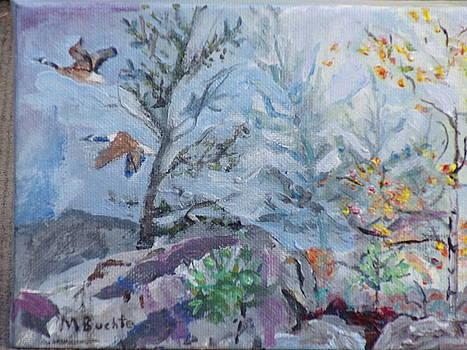 Summit Bouders by Margaret Buchte