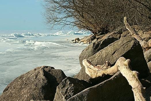 Sun And Ice On Lake Ontario by Iris Russak