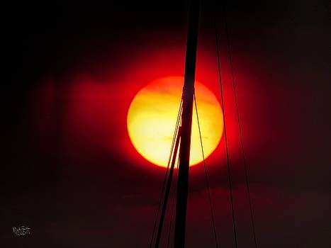 Sun and Mast by Rick Lawler