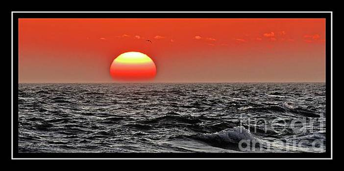 Sun and Sea Gull Ver2 by Larry Mulvehill