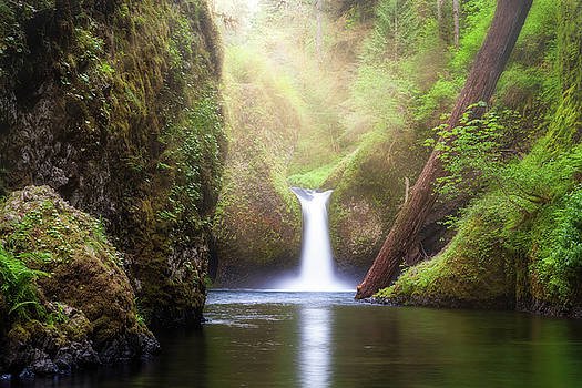 Sun Beams Over Punch Bowl Falls by David Gn