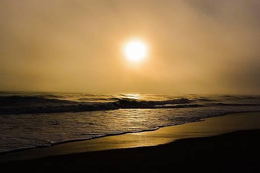Sun Burn by Eddy Mann