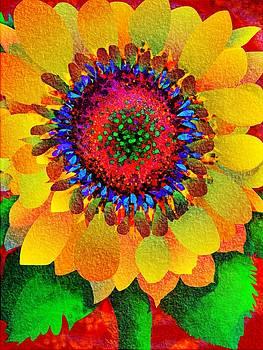 Sun Burst by Mary Eichert