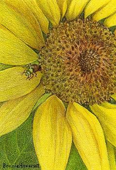 Sun Flower Guardian ACEO by Bonnie Haversat