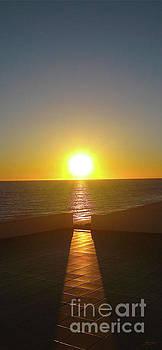 Sun Gazing by Gem S Visionary