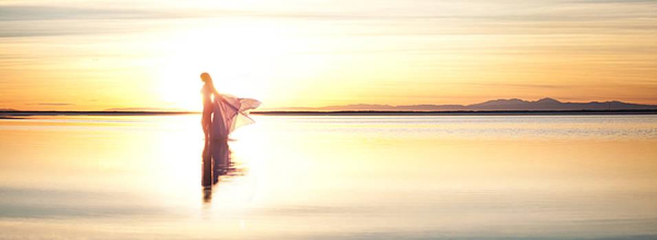 Sun Goddess Pano by Dario Infini