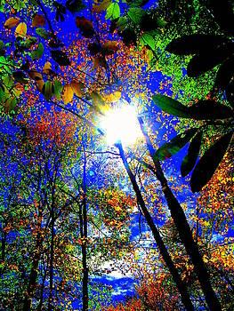 Sun Jewels by Rollin Jewett