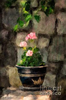 Lois Bryan - Sun Kissed Pinks