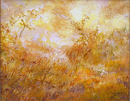 Sun light Through the Mist by Jackie Langford
