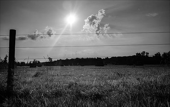 Sun on the hayfield by Jeff Sebaugh
