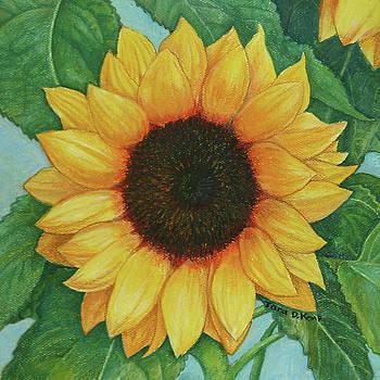Sun One by Tara D Kemp