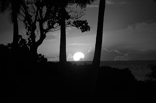 Sun or Moon by Steve  Weihe