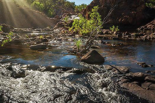 Sun rays at Edith Falls, Northern Territory, Australia. by Daniela Constantinescu