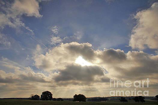 Billy Moore - Sun Rays