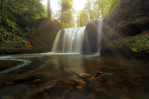 Sun Rays over Hidden Falls by David Gn