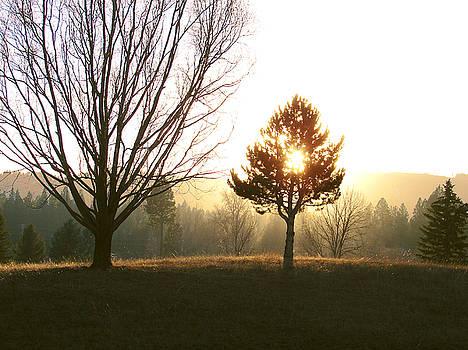 Sun Setting by Joseph Hawkins