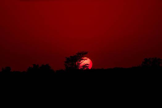 Sun Setting by Mary Nash-Pyott