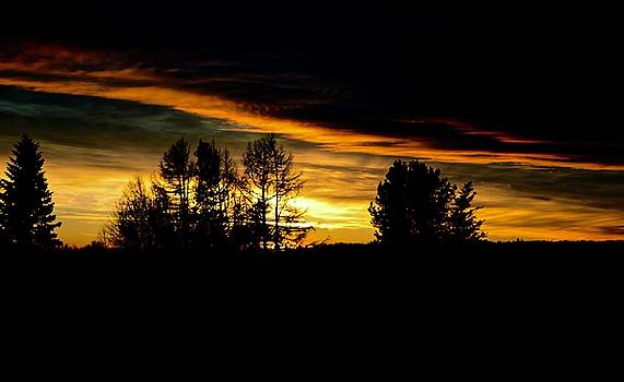 Sun setting November by Brian Sereda