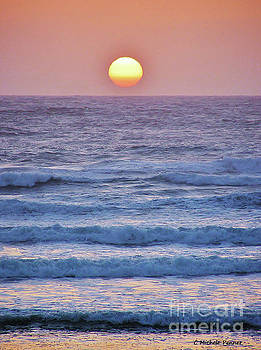 Sun to Sea by Michele Penner