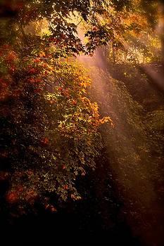 Sun Up by J Henderson