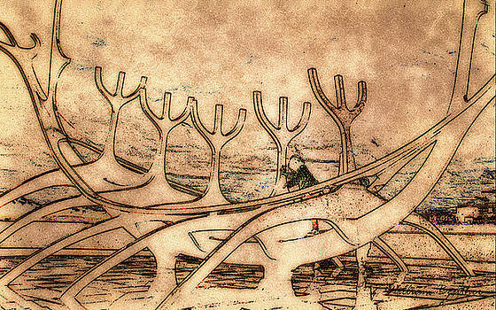 Sun Voyager 2 by William Beuther