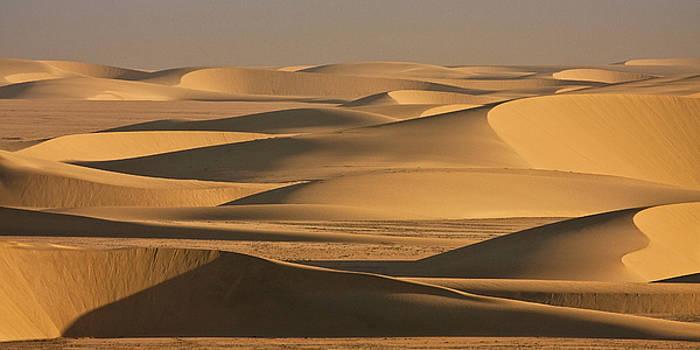 Sylvia J Zarco - Sunbathed shadow dance of sand