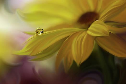 SunBeam... by Juliana Nan