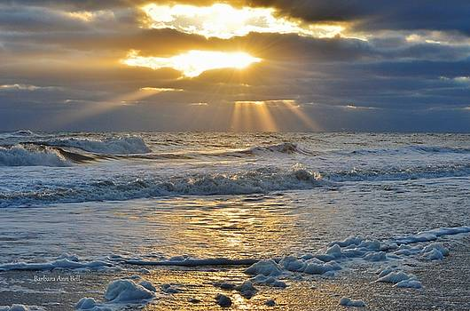 Sunbeams  by Barbara Ann Bell