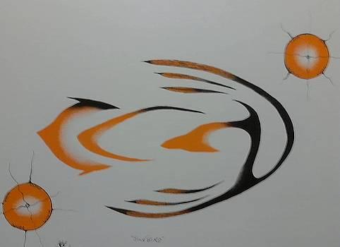 Sunbird by Peter Hawke Hill