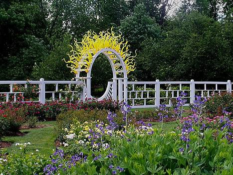 Sunburst Gate 2 by Julie Grace