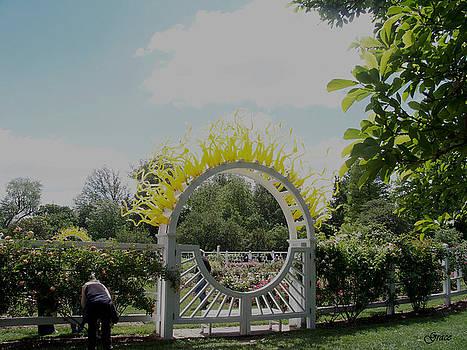 Sunburst Gate by Julie Grace