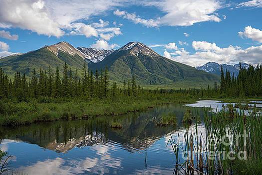 Sundance Peak in Vermillion Lakes by Mike Reid