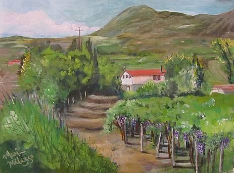 Sunday Morning at Ocone Vini Montesarchio Italy by Maria Milazzo