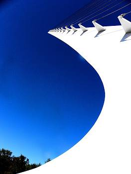 Elizabeth Hoskinson - Sundial Bridge one