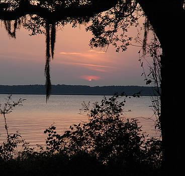 Sundown by Althea Sumpter