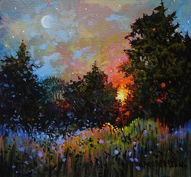 Sundown, Blackie Spit Meadow by Catherine Robertson