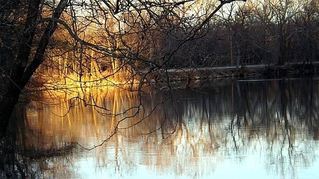 Colette Merrill - Sundown on the river