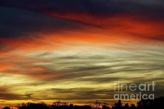 Sundown Sky  by Carol F Austin