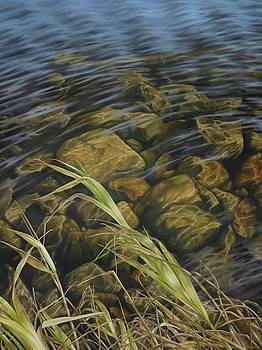Sunfall by Jason Sawtelle
