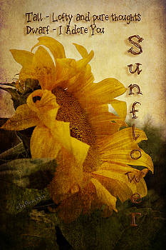 Sunflower - I Adore You by Joy Gerow